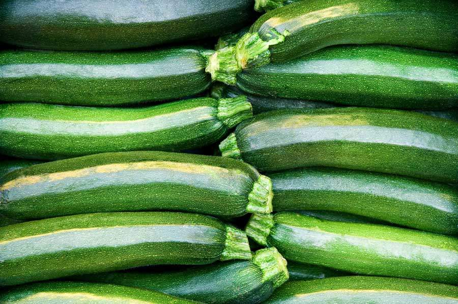 Can Cows Eat Zucchini?